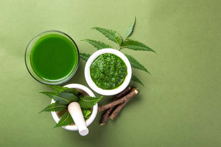 Medicinal Neem leaves in mortar and pestle with neem paste, juice and twigs on green background Stock Photo