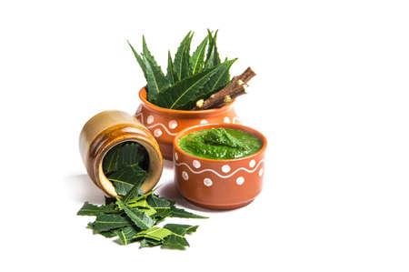 Medicinal Neem leaves with paste and twigs on white background