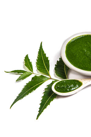 Medicinal Neem leaves with neem paste in spoon and plate on white background (Azadirachta indica)