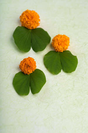 Indian Festival Dussehra, showing golden leaf (Bauhinia racemosa) and marigold flowers