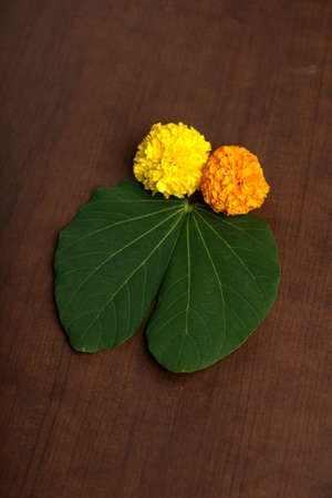 Indian Festival Dussehra, showing golden leaf (Bauhinia racemosa) and marigold flowers on a Brown background.