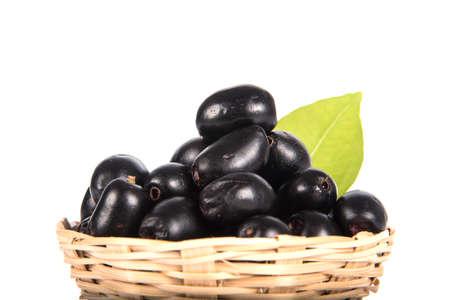 Jambolan plum or Java plum (Syzygium cumini)