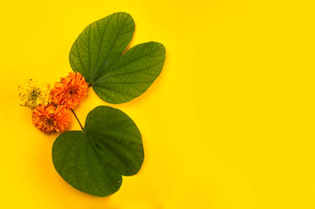 Indian Festival Dussehra, showing golden leaf (Bauhinia racemosa) and marigold flowers on a yellow background. 版權商用圖片