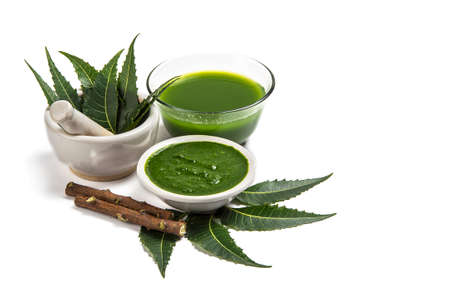 Medicinal Neem leaves in mortar and pestle with neem paste, juice and twigs on white background Stock Photo