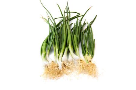 Fresh ripe green spring onions (shallots or scallions) on white background Reklamní fotografie