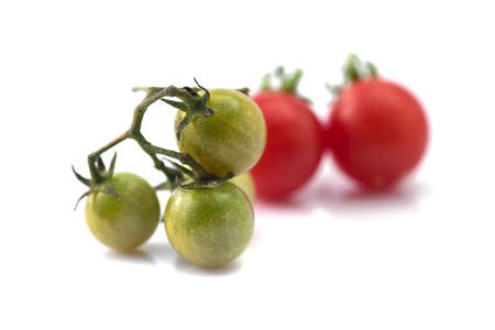 Close up of fresh cherry tomato on branch isolated on white background.