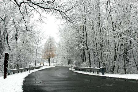 michigan snow: A road in winter in Michigan
