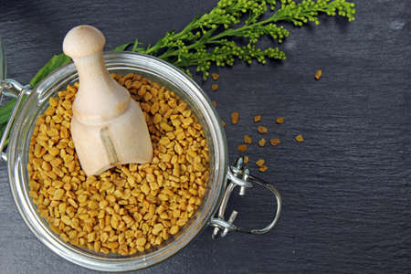 Fenugreek seeds in a jar on grey background with copy space.