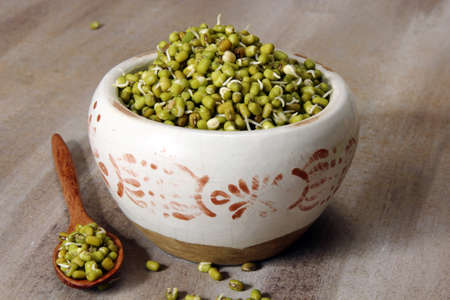 Mung beans sprouts in a container, selective focus.