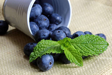 A close up of a container with blueberries and mint leaves with copy space