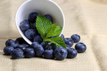 Blueberries with mint leaves in a white container with copy space, selective focus Zdjęcie Seryjne