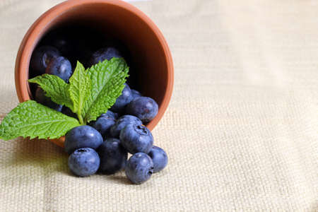 Blueberries with mint leaves in a clay container with copy space, selective focus Zdjęcie Seryjne