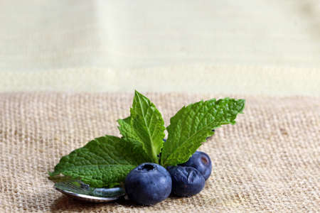 Blueberry on a spoon with mint leaves on a burlap cloth with copy spoon. Zdjęcie Seryjne
