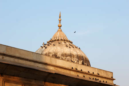 mughal empire: The Dome at Diwan E khas building with Pigeons in Red Fort, Delhi