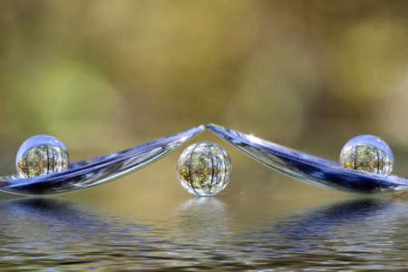 Three transparent balls on spoons with refraction of nature around. Stock Photo