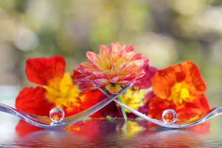 Three transparent balls on forks with refraction of nature around.