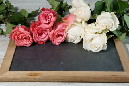 Pink and white Roses on a grey slate with copy space for a message.
