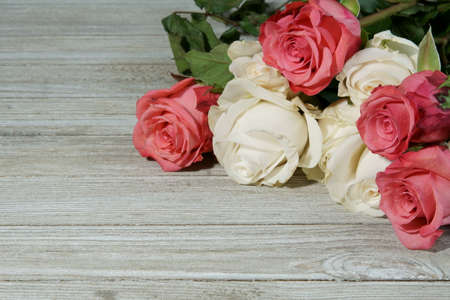 Pink and white Roses with copy space for a message.
