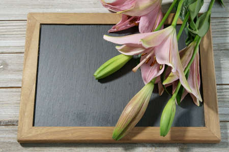 A bunch of pink Lillies on a slate background with copy space. Stock Photo