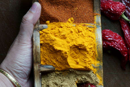 A hand holding a spices box with turmeric powder, coranider powder, and chili powder. Stock Photo