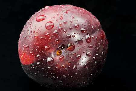 A fresh Plum with water drops.