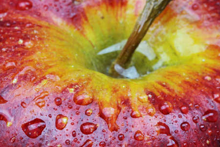 A close up of a red delicious Apple with water drops Stock Photo