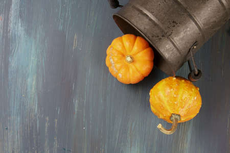 Pumpkins in a metal container on a wooden background with copy space. Stock Photo
