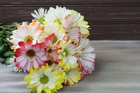 A bunch of colorful Chrysanthemum flowers with copy space.