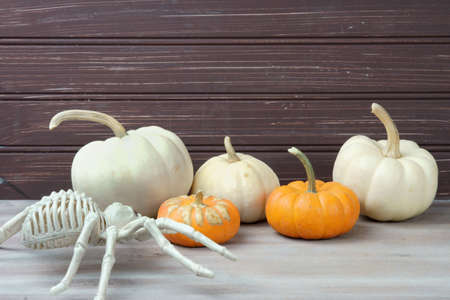 White Pumpkins with a spider decoration for Halloween.