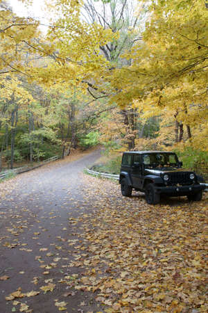 A vehicle parked on the road in the fall or Autumn season with leaves.