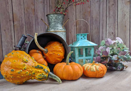 A still life of Pumpkins and a candle lamp Stock Photo