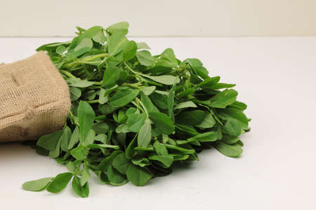 Fenugreek leavs or Methi leaves in a burlap bag on wooden background with copy space. Stock Photo