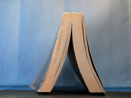 An inverted reading book on blue background.