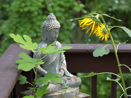 Statue of Gautam Buddha in the garden in Summer season