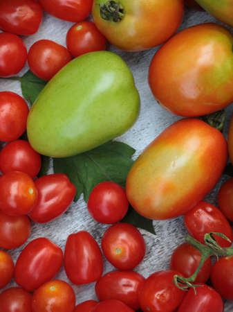 Cherry tomatoes with Roma Tomatoes on a grey background  filling the frame.