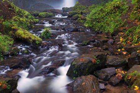 oregon cascades: Beautiful Cascade flowing through the rocks