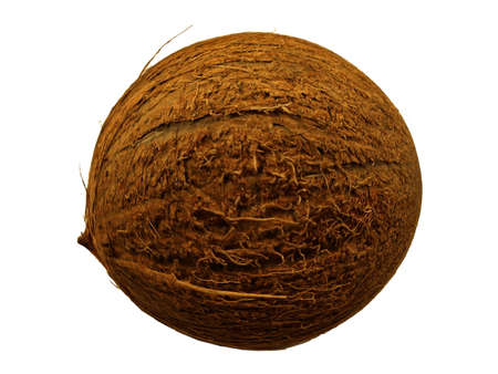 voids:  nut of a coconut palm tree