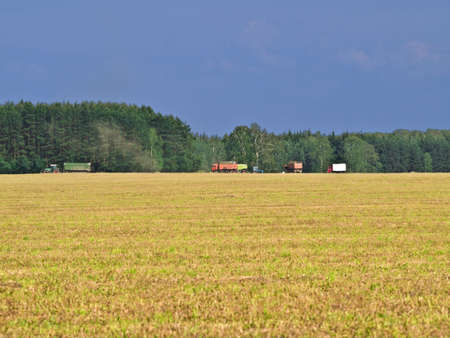 Agricultural landscape, it`s looming over field photo