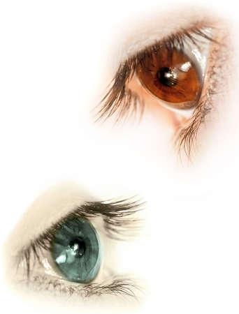 perfil de mujer rostro: Varios de los ojos sin makeups  Foto de archivo