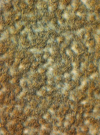 mire: Abstract tussock marsh