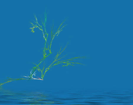 abstract branch over blue water photo