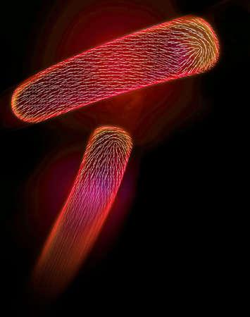 incursion: R�sum� des bact�ries dans le sang