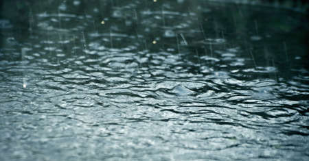 trickles: rainy water surface