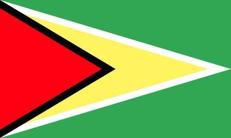 Guyana: Guyana flag