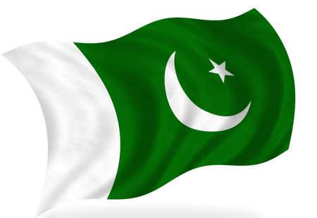 pakistan: Pakistan  flag, isolated