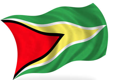 guyana: Guyana  flag, isolated