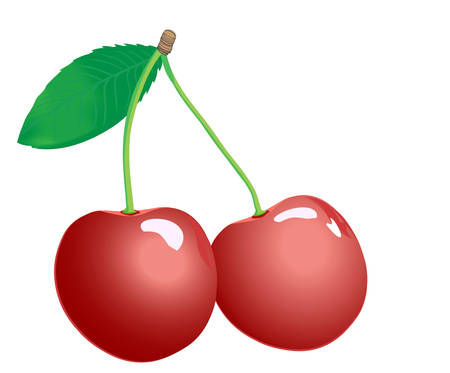 2 cherry, isolated Illustration