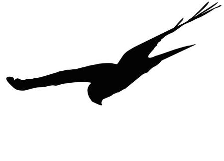hover: flying hawk, silhouette Illustration