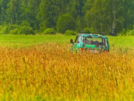 colouration: SUV in field