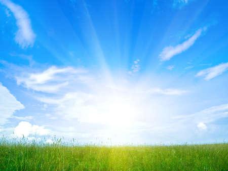 ray: morning field